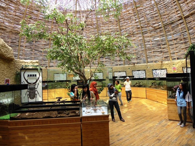 Tempat pameran serangga